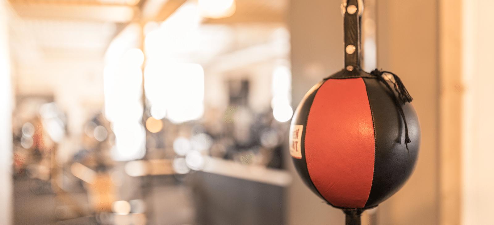 Boxball-Fitness-Loft-1600x730px