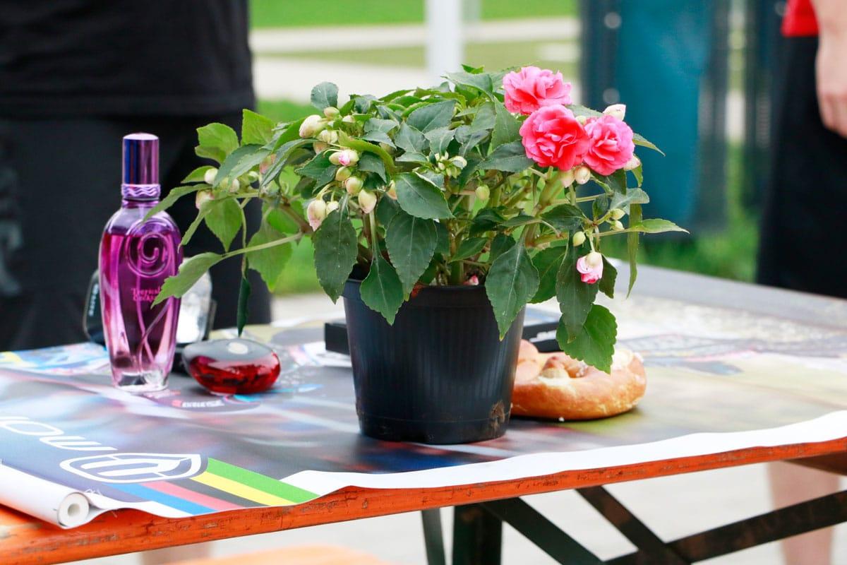 Ein-Blumentopf-auf-dem-Tisch-1200x800px
