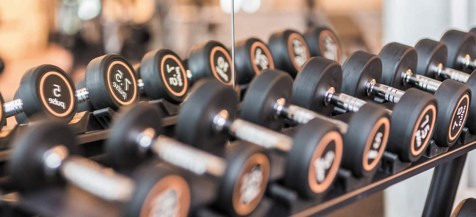 Fitness-Loft Gundelfingen Freihantelbereich