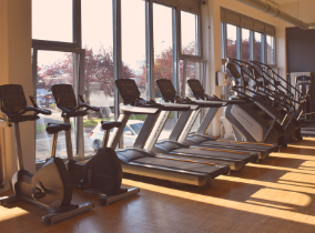 Mehrere Crosstrainer, Laufbänder und Stairmaster im Fitness-Loft Haid